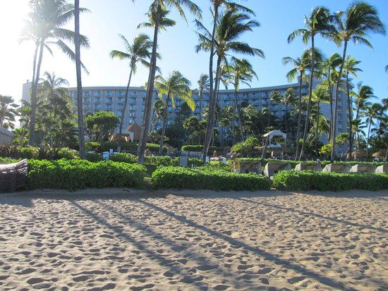Westin Maui Resort And Spa: The hotel from the beach
