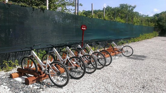 Valentin Imperial Riviera Maya: Bike Tour Stop by the Chef's Garden - worth the tour