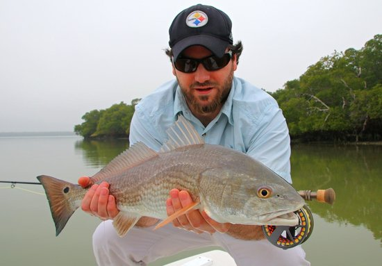 Redfish 2014 picture of everglades sight fishing for Everglades city fishing