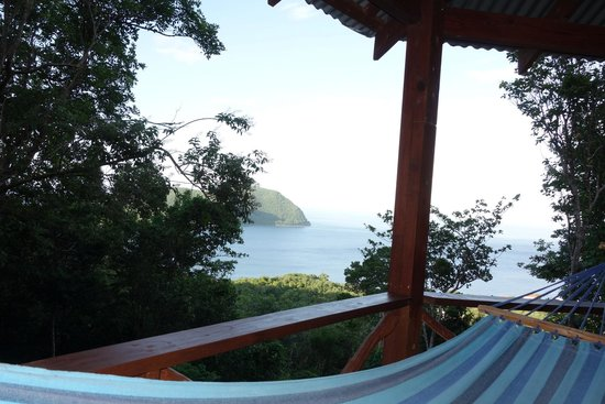 Manicou River: View from our tree house