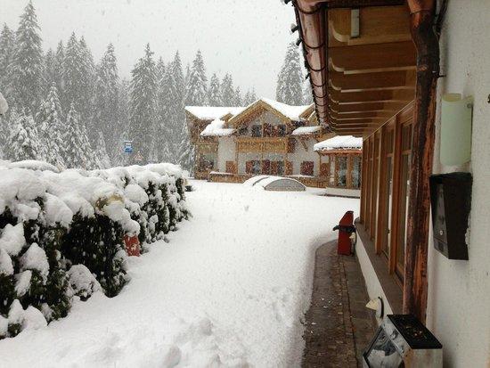 Hotel Restaurant Wellness Waldheim: Non manchera' la neve.