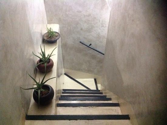 Riad Dar Ftouma: acces a la terrasse