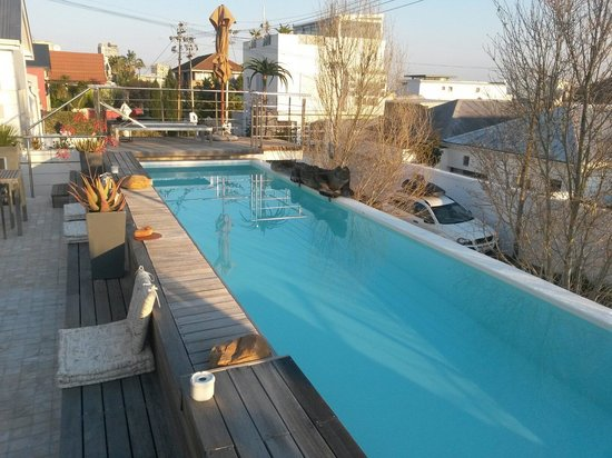 Dysart Boutique Hotel: Hotel pool