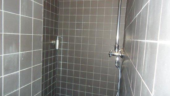 Le Vaudeville - Chambres d'Hotes : Shower box