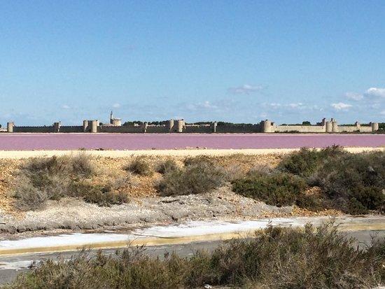 Salin d'Aigues-Mortes : Vue sur fort aigue-morte