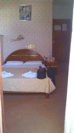Faros Beach Hotel: Room