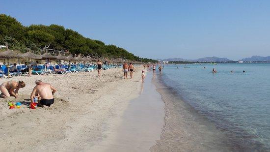 Prinsotel La Dorada: spiaggia