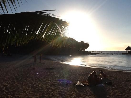 Club Med La Plantation d'Albion: plage voile