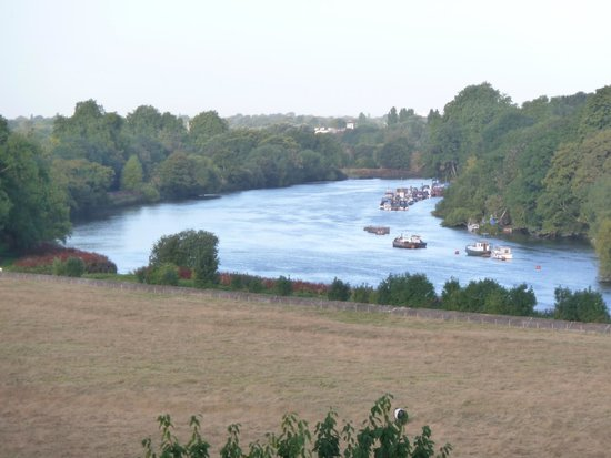 View of the River Thames from the restaurant