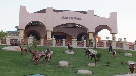 Jungle Aqua Park: front of the hotel