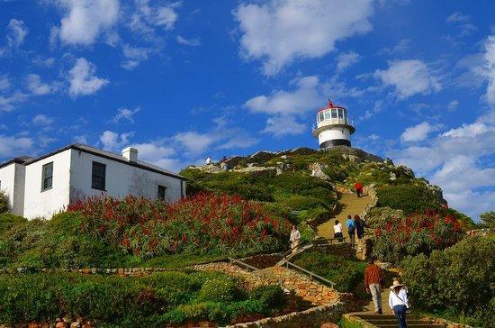 Cape Point Nature Reserve: ケープポイントの灯台
