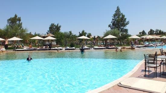 Jungle Aqua Park : pool hear restaurants