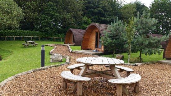 Dacre Lakeside Park: Our pod