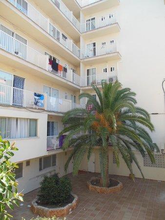 Hotel Palma Mazas: hotel
