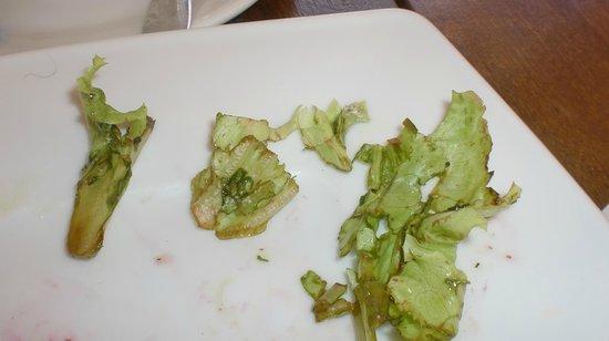 Aula: Приглядитесь - листья салата гнилые. И это в сезон.