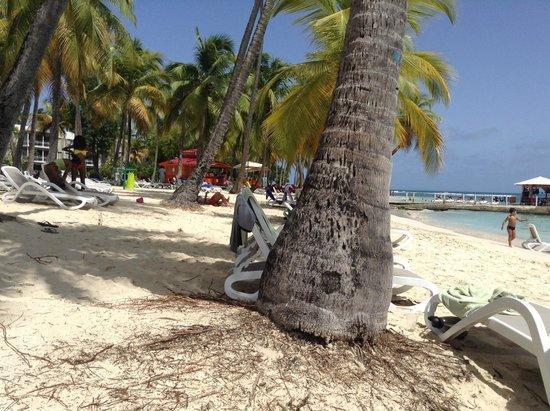 Club Med La Caravelle: La plage, magnifique, sable blanc, eau turquoise.