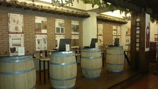 Hotel Gio' Wine e Jazz Area: Internet Point
