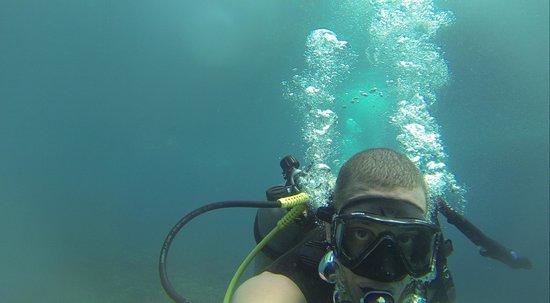 Asia Divers: diving Koh Tao