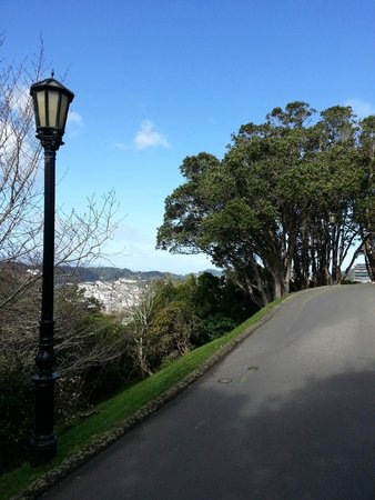 Wellington Botanic Garden: Nice view