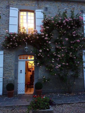 "Maison Darthezenea : Mr le rosier Pierre de Ronsard ® ""by night"""