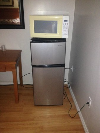 American Plaza Motel: Beautiful mini fridge
