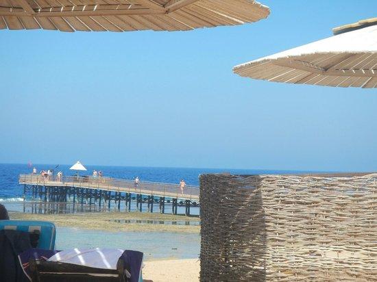 Resta Reef Resort: pontoon