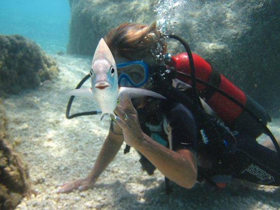 Diving Cala Mariolu