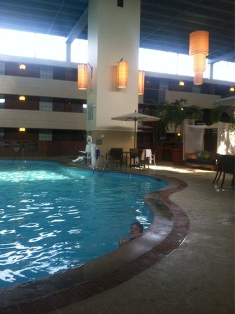 The Inn at Opryland, A Gaylord Hotel: Nice pool area