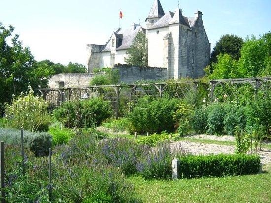 Chateau de la Motte : Château vue du jardin