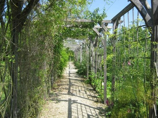 Chateau de la Motte : Partie du jardin