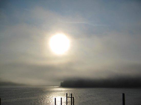 Seine Boat Inn : Sun through the fog