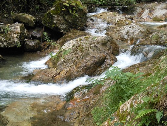 Valle delle Ferriere : Valle Ferriere 2
