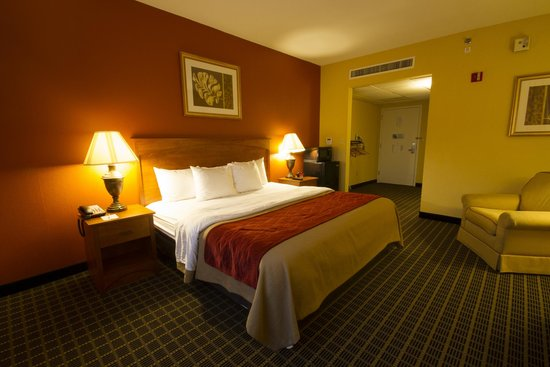 Clarion Inn  & Suites Miami Airport: King Room