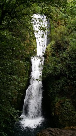 Bridal Veil Falls State Park: Bridal Veil Falls