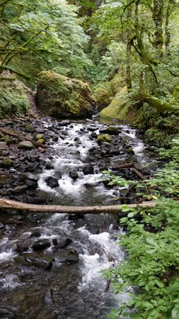 Bridal Veil Falls State Park : A creek along the hike to the falls