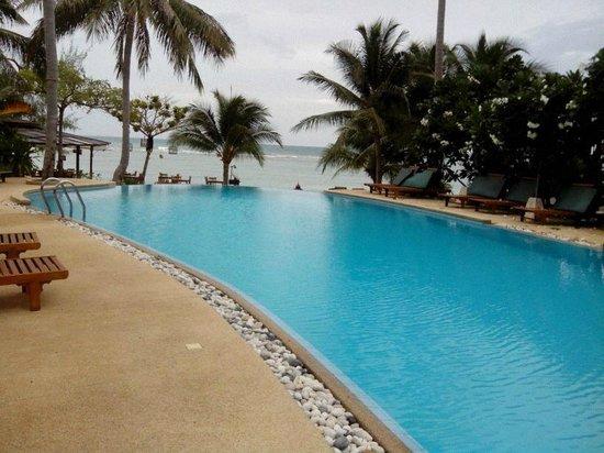 Green Papaya Resort: Vista de la piscina desde una hamaca
