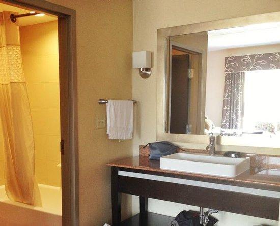 Hampton Inn & Suites Chattanooga / Downtown: bathroom