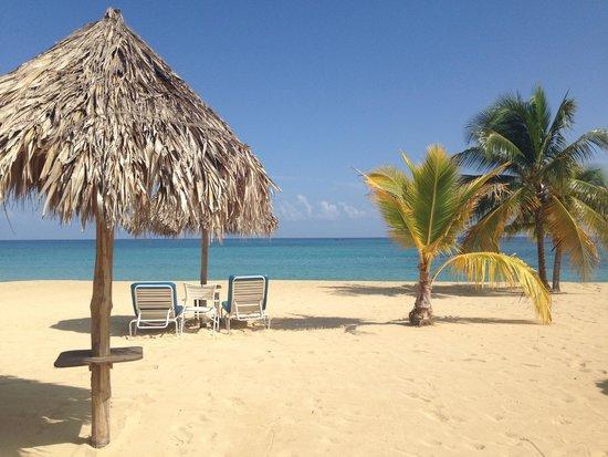 Jamaica Inn: What a view!