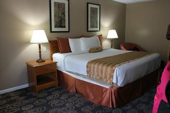 Regency Hotel Miami: Lit confortable