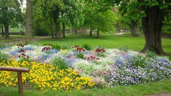 Altstadt: Beautiful gardens!