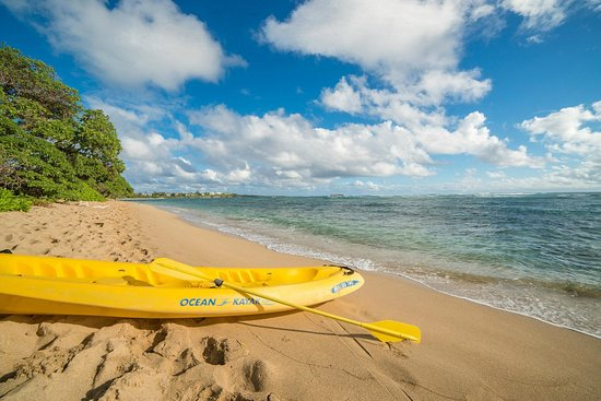Tiki Moon Villas: Our complimentary kayak use from our beach front