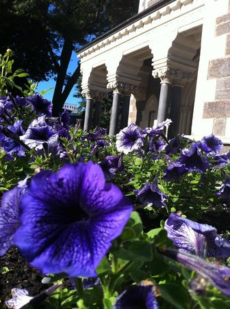 Botanischer Garten Christchurch: Christchurch Botanic Gardens