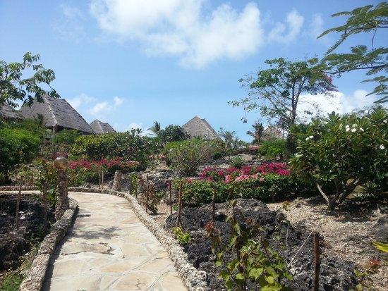 Jacaranda Beach Resort: Ambiente esterno