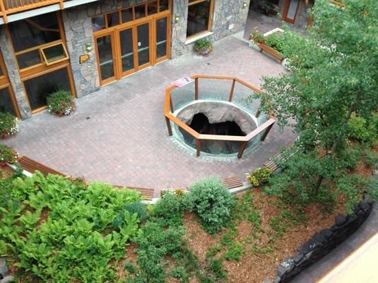 Fox Hotel & Suites : Piscine intérieure avec vue extérieure