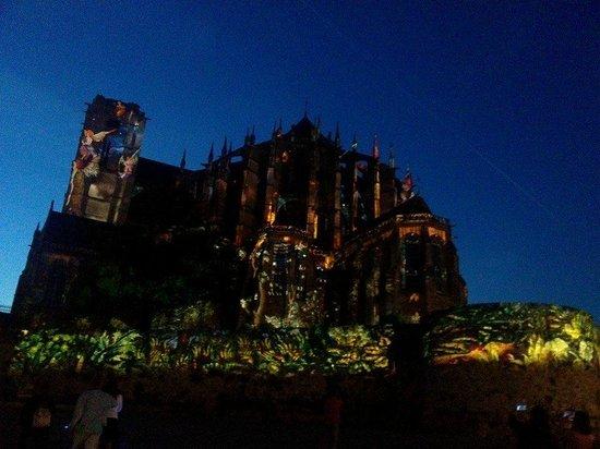 La Nuit des Chimeres : Cathédrale Saint-Julien