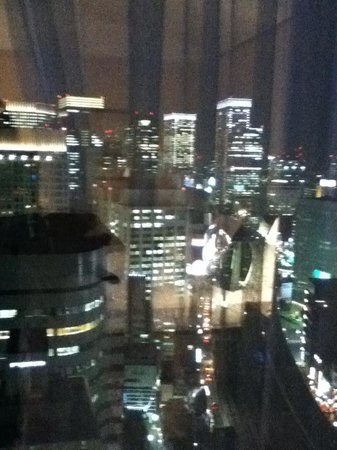 Imperial Hotel Tokyo: View from Window