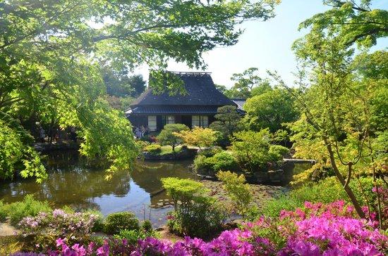 Isuien Garden grounds - Picture of Isuien Garden, Nara ...