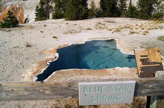 Upper Geyser Basin : Pretty pool