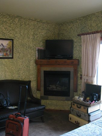 A Bear and Bison Canadian Country Inn: Lovely fireplace and flat screen tv