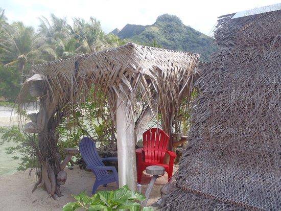 Lagoonarium: The backyard of the bungalow